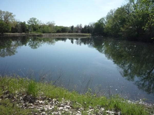A nearby pond