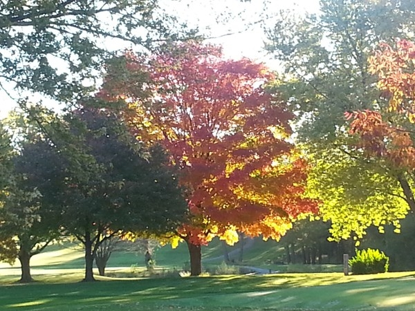 A beautiful brisk fall morning at the Urbandale Golf & Country Club.  A favorite view in Urbandale