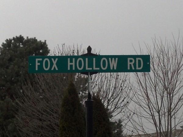 Fox Hollow area