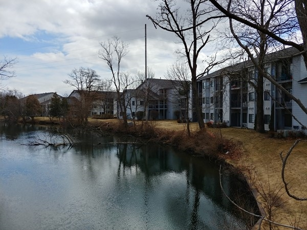 Riverine Condominiums offer Boardman River frontage and a short walk to shops, restaurants