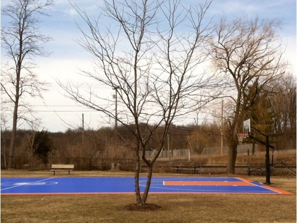 The basketball court at Mill Pond Park and Hart Community Center