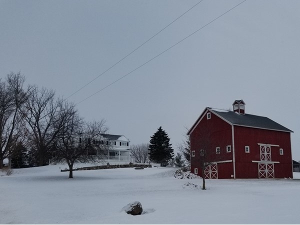 Isn't this pretty enough for a Christmas picture?  Bring your horses to Fowlerville