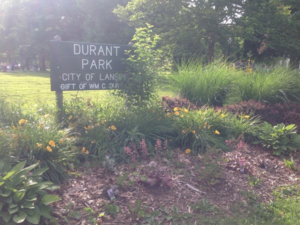 Time for some summer park fun at Durant Park