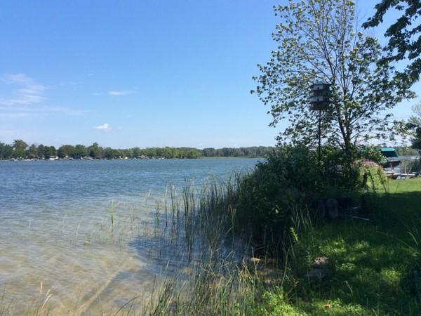 Homes For Sale Miner Lake Allegan Mi