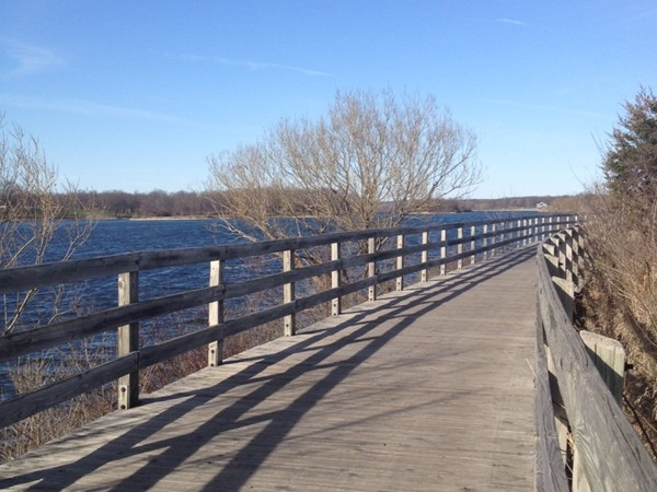 I love to walk along the boardwalk at Kensington Metropark overlooking Kent Lake