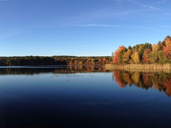 Fall at Pickerel Lake