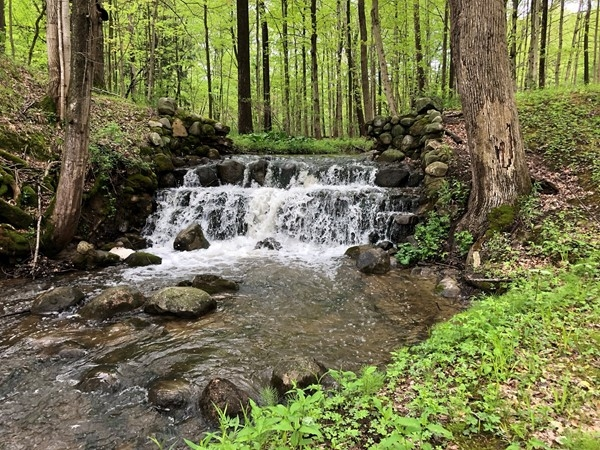 Just one of my favorite spots in Southwest Michigan is this beautiful waterfall near Berrien Springs