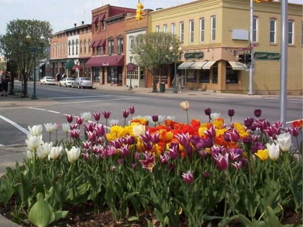 Downtown Chelsea with tulips courtesy of the Garden Club.  I love the small town ambiance.