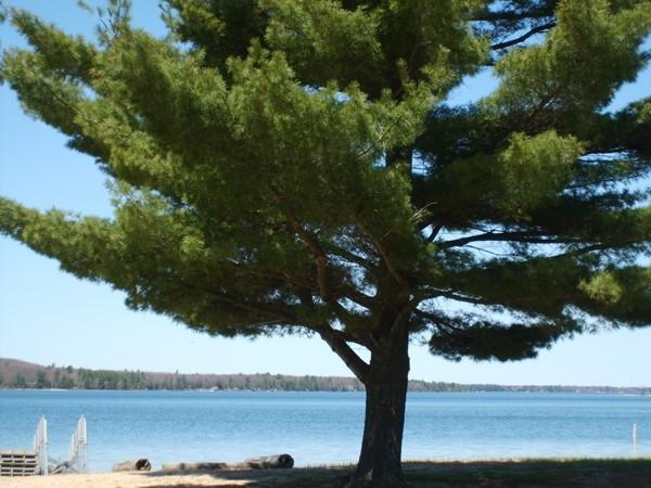 Otsego Lake State Park | Michigan