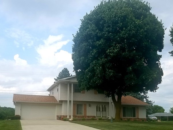 Mature trees shade lovingly maintained homes
