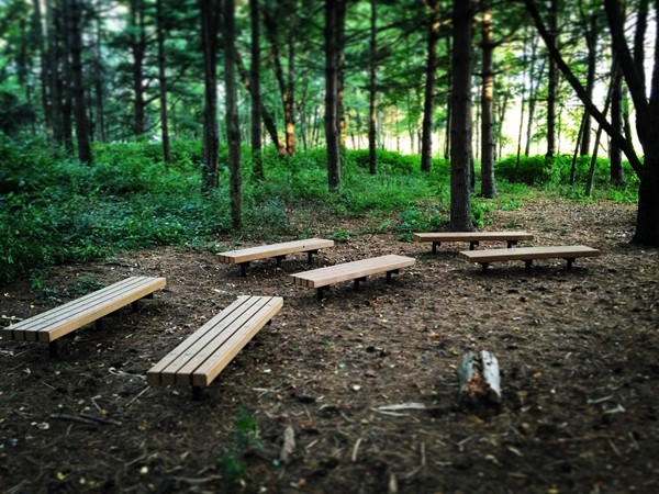 Amberly Elementary boasts an outdoor classroom in their wooded adjacent lot