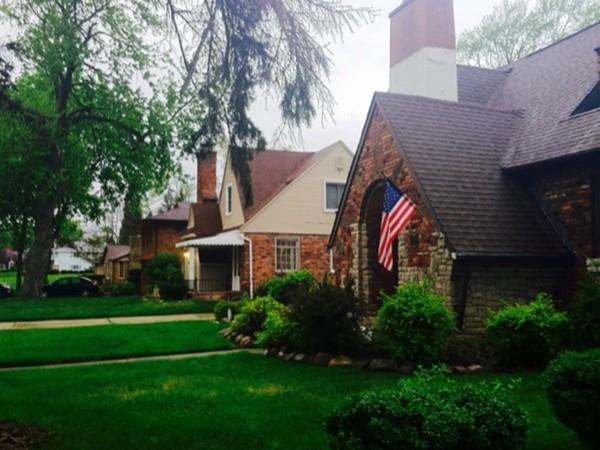 Beautiful older homes in Mott Park