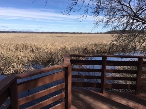 Viewing deck at Lions Park