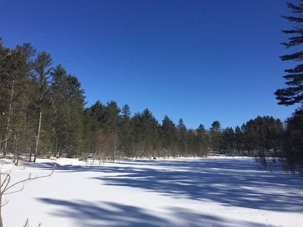 XC ski or snowshoe along Riley's loop on the Vasa trail for beautiful views of frozen lakes
