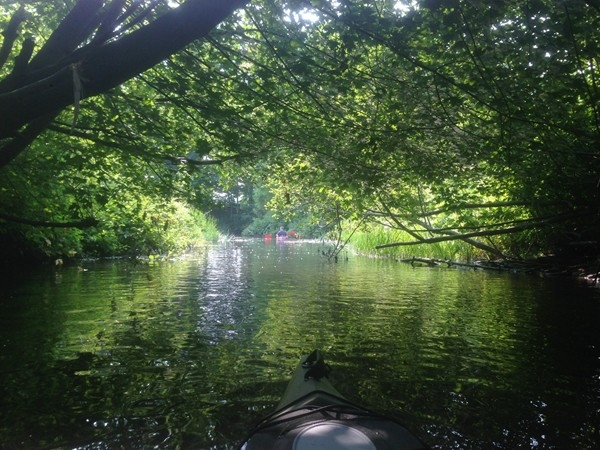 Pigeon River Is A Popular Kayak Or Canoe Destination Near Hemlock Crossing In Ottawa County