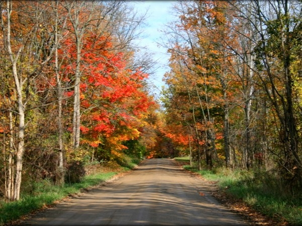 Fish Lake Road in Rose Township; Holly Schools