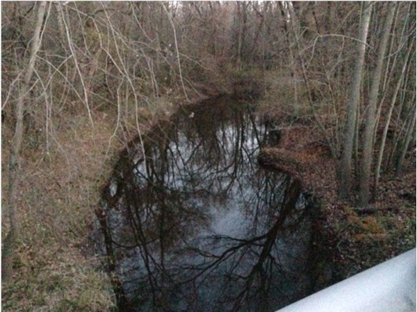 Deer Creek that runs through Coopersville is so peaceful