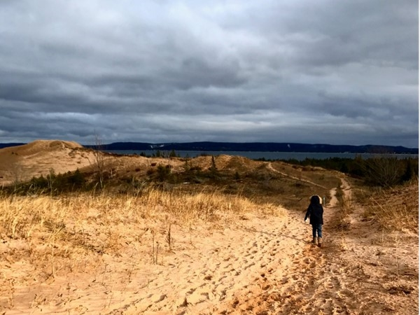 Glen Haven Dunes on a blustery January day
