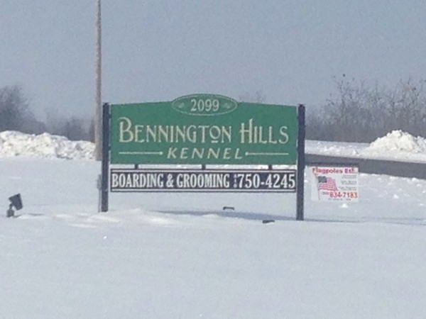 Bennington Hills Kennel is the place to care for your dog in Fenton. World famous Goldens!