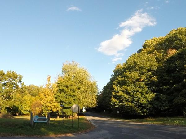 Where White Lake Drive meets White Lake on Lake Street
