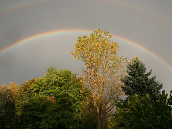 Life's not so bad under the rainbow in Haslett