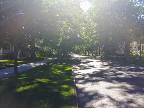 Sunlight streaming, tree-lined and brick-paved streets, flags waving ...we love downtown TC