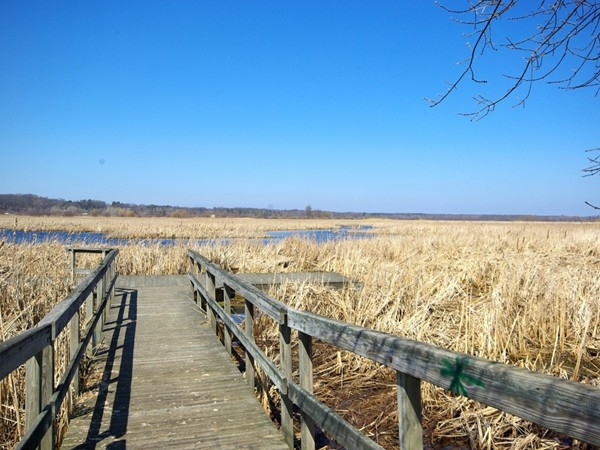 Lions Park boardwalk out into the river flats