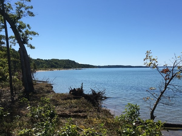 Maple Bay Natural Area - beautiful woods and beach to explore in Williamsburg