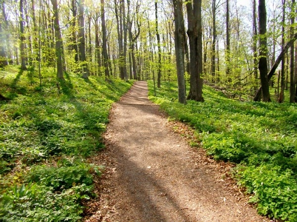 Empire Bluff Walk