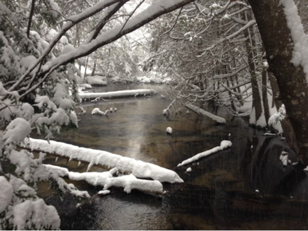 Crossing the Minnehaha on the McCune Nature Preserve in January