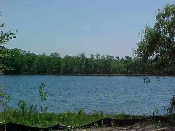 Meadow View Lake