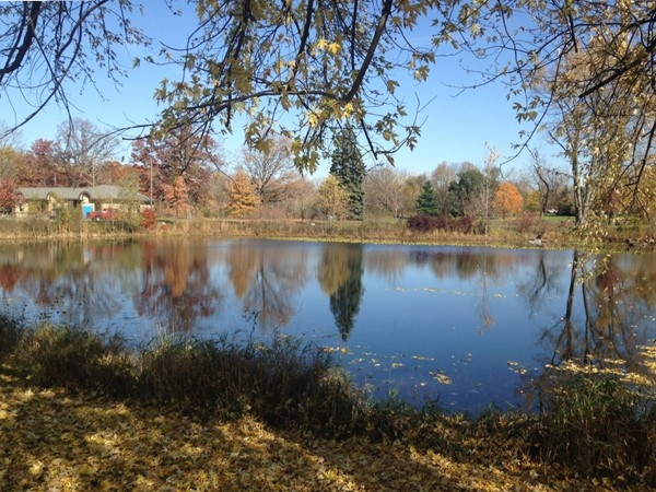 View of pond at entrance to Valhulla Park. This park is a great addition to the Holt Community