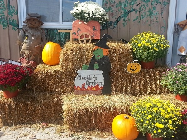 Fall fun at Meuller's Orchard, Linden