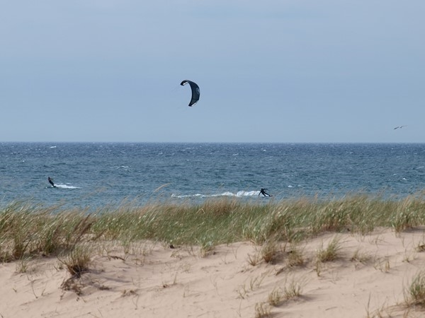 A familiar sight on the breezy shores of Lake Michigan in Frankfort