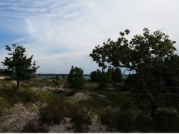 What a beautiful place to spend the day. Sand dunes, Petoskey stones, and rock galore