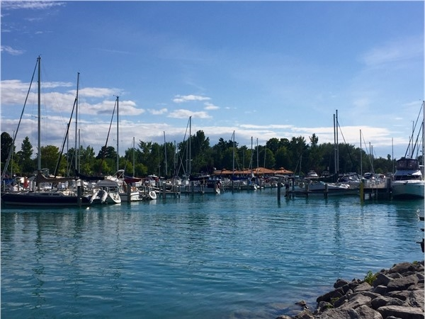 Enjoy Elk Rapids from Elk Rapids Marina or zip across East Bay to the Village of Suttons Bay