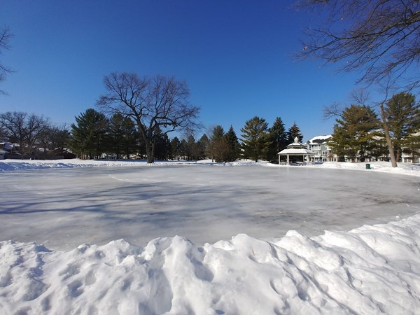 Who's up for iceskating under a beautiful blue sky in F & M Park