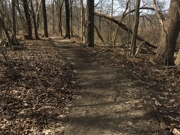 Walking trail in Lions Park