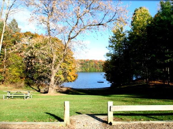 Dunham Lake beach and picnic area in Hartland