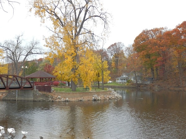 Fall is Beautiful in Grand Ledge