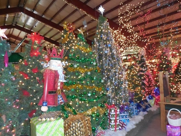 Santa's Village at the Saginaw County Fairgrounds. Open Saturdays and Sundays after Thanksgiving