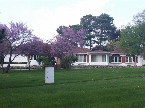 Woodcroft estates development real estate homes for sale for Sprawling ranch homes