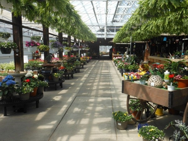 Motman's Greenhouse is a family owned business with quality plants, flowers, and vegetables