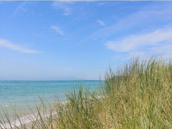 So much beautiful shoreline to explore and enjoy Lake Michigan near Empire