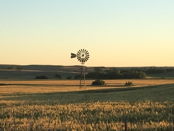 Peaceful countryside near Weatherford