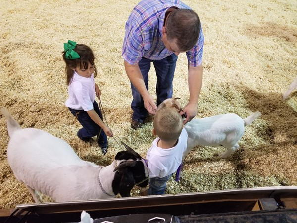 Peewee Goat Exhibitors at the 2017 Leflore County Fall Fair