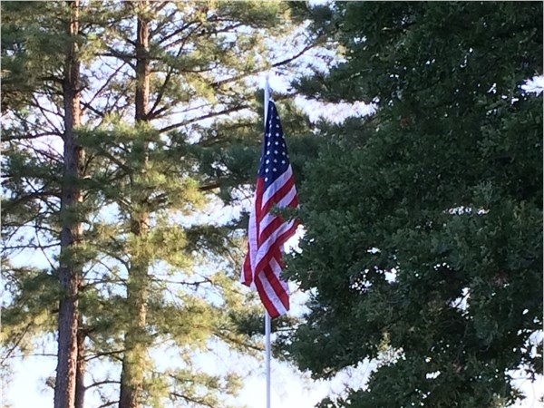 The U. S. red, white and blue on Flag Day