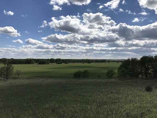 The late spring rains made everything green at the Washita Wildlife Refuge east of Hammon