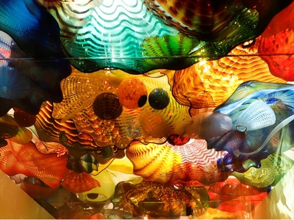 Dale Chihuly Glass - Ongoing Exhibit at the OKC Museum of Art located in Bricktown
