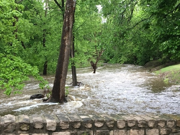A swollen brook at the entrance to Clearbrook
